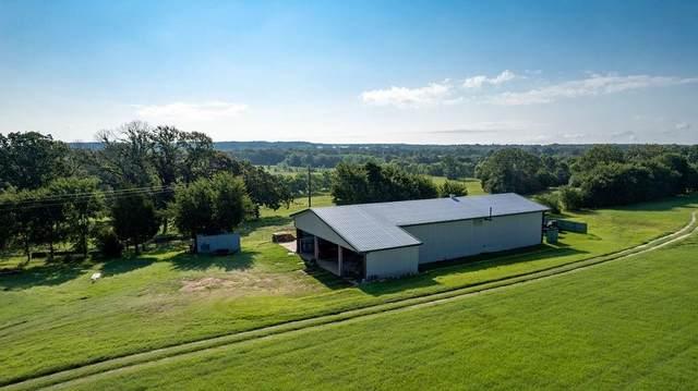 10930 County Road #4336, Larue, TX 75763 (MLS #14626727) :: The Kimberly Davis Group