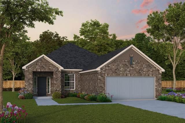 3600 Sawtooth Lane, Little Elm, TX 75068 (MLS #14627052) :: Wood Real Estate Group