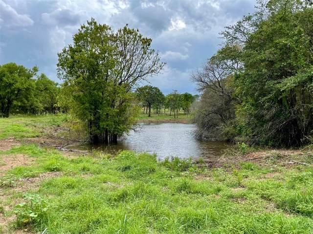 Lot 48 Greene Road, Weatherford, TX 76087 (MLS #14628666) :: Premier Properties Group of Keller Williams Realty