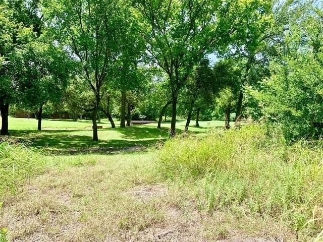 34087 Stonewood Court, Whitney, TX 76692 (MLS #14628973) :: The Property Guys