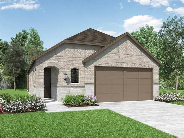 3962 Rochelle Lane, Heartland, TX 75126 (MLS #14629031) :: The Property Guys