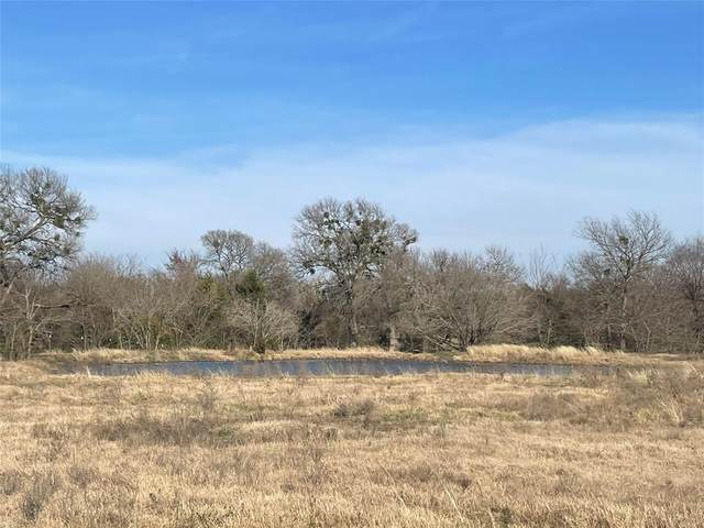 TBD Vzcr 3808 Tract 4, Wills Point, TX 75169 (MLS #14629480) :: Real Estate By Design