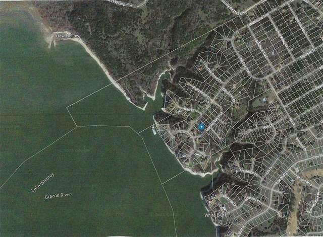 1176 Leaning Oak Trail, Whitney, TX 76692 (MLS #14629905) :: RE/MAX Landmark