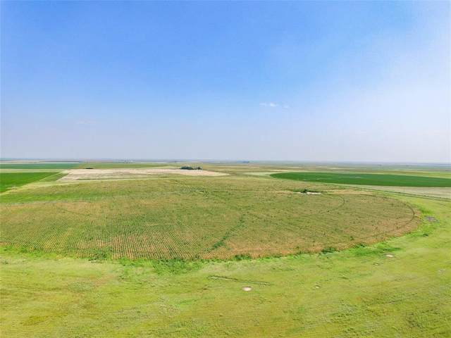 TBD Fm 617, Rochester, TX 79544 (MLS #14630923) :: Real Estate By Design
