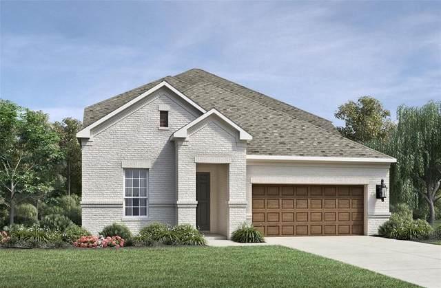 1517 Schwartz Lane, Denton, TX 76210 (MLS #14630925) :: Real Estate By Design