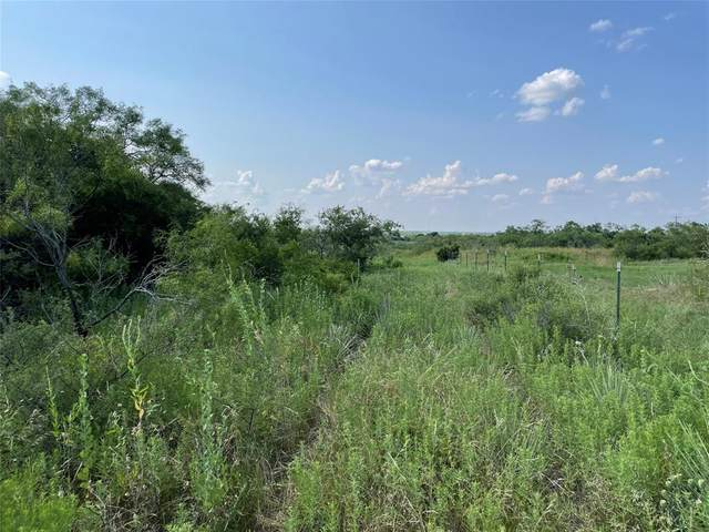 Tract 3 605, Hawley, TX 79525 (MLS #14630929) :: Real Estate By Design