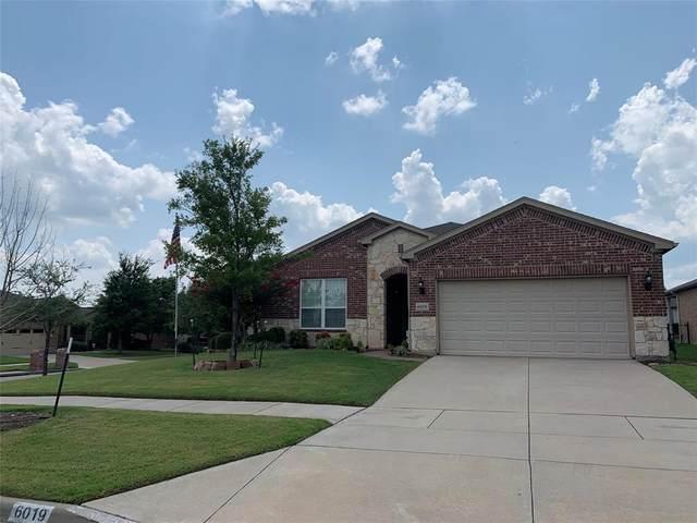 6019 Eagle Point Lane, Frisco, TX 75036 (MLS #14631423) :: The Daniel Team