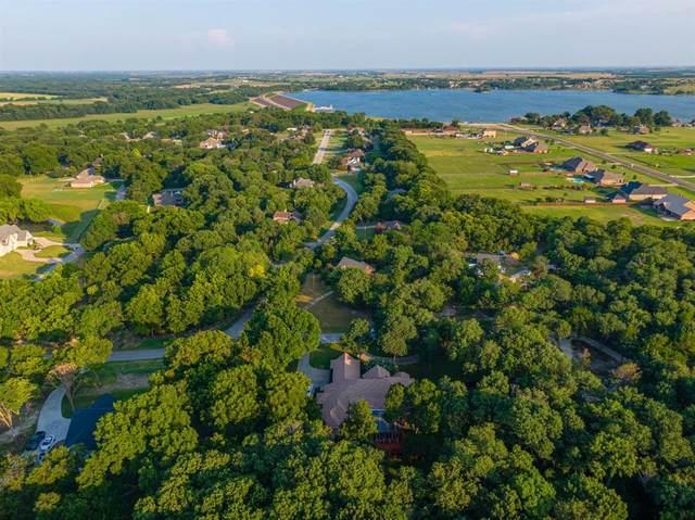 159 Willow Run, Waxahachie, TX 75165 (MLS #14633147) :: Jones-Papadopoulos & Co