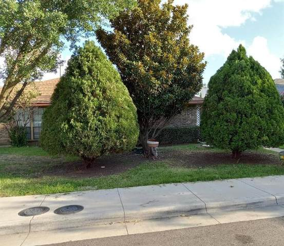 3014 Allister Street, Dallas, TX 75229 (MLS #14633624) :: The Chad Smith Team