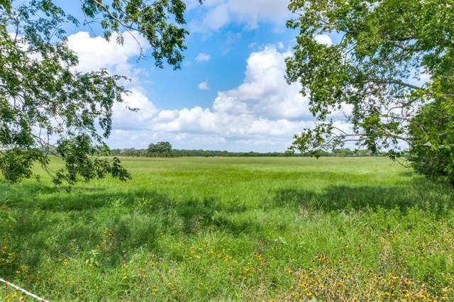 Tract 2 County Road 2429, Kemp, TX 75143 (MLS #14633715) :: Robbins Real Estate Group