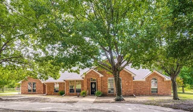 12 Kingswood Drive, Lucas, TX 75002 (MLS #14634225) :: Feller Realty