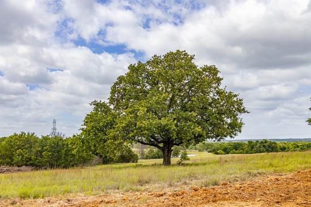 104 Bosal Lane, Weatherford, TX 76088 (MLS #14634512) :: The Mitchell Group