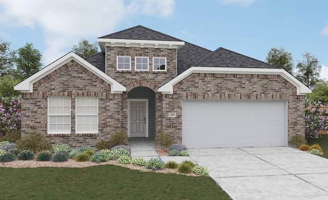 2619 Cannon Court, Glenn Heights, TX 75154 (MLS #14634574) :: The Chad Smith Team