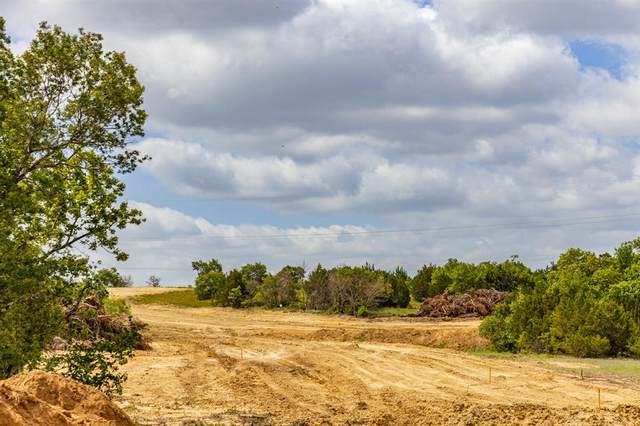 229 Latigo Way, Weatherford, TX 76088 (MLS #14634626) :: The Mitchell Group