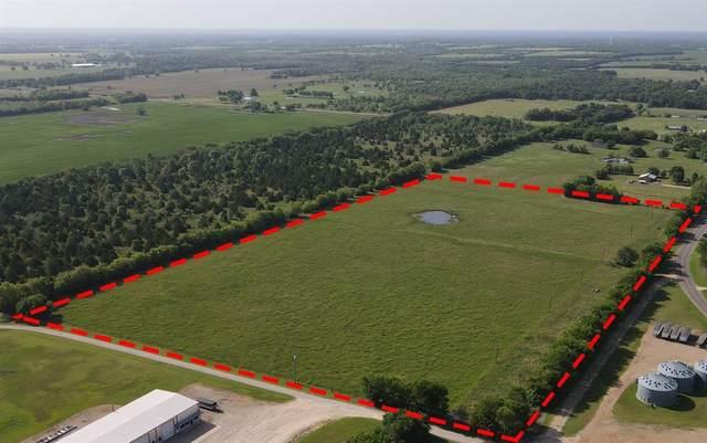 00 E Farm Road 198, Lake Creek, TX 75450 (MLS #14634996) :: Real Estate By Design