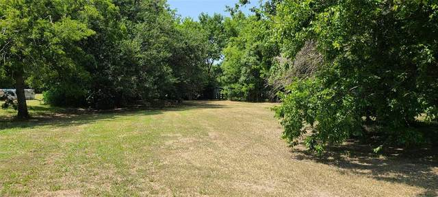 000 Blanche, Terrell, TX 75160 (MLS #14635153) :: The Star Team | Rogers Healy and Associates