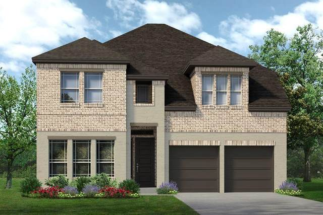 3725 Prickly Pear Road, Little Elm, TX 75068 (MLS #14635219) :: The Property Guys