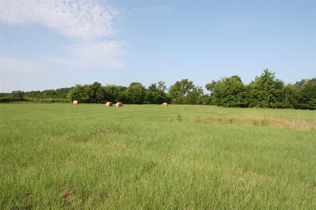 TBD Vz County Road 4510, Ben Wheeler, TX 75754 (MLS #14635222) :: The Mauelshagen Group