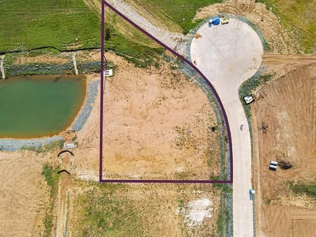 28 Bradford Lane, Copper Canyon, TX 76226 (MLS #14635599) :: Lisa Birdsong Group | Compass