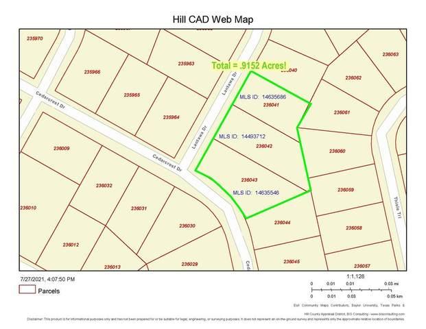 43137 Lantana Drive, Whitney, TX 76692 (MLS #14635686) :: The Mauelshagen Group