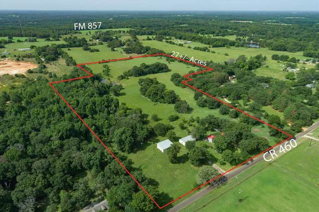 24873 County Road 460, Grand Saline, TX 75140 (MLS #14636339) :: The Chad Smith Team