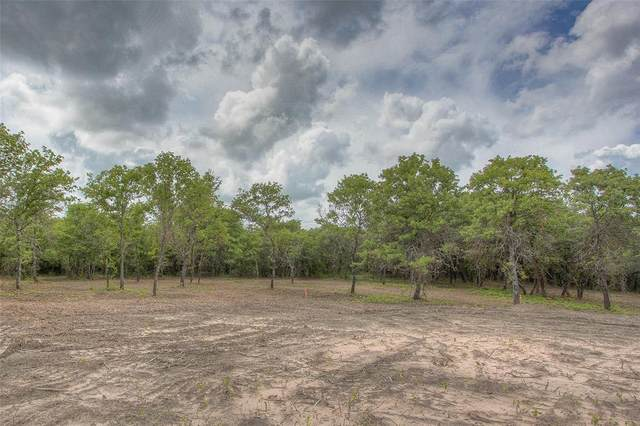 Lot 10 Hidden Ranch Lane, Perrin, TX 76486 (MLS #14636496) :: Real Estate By Design
