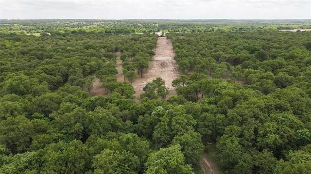 Lot 2 Hidden Ranch Lane, Perrin, TX 76486 (MLS #14636611) :: Real Estate By Design