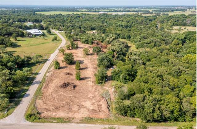 800 W Wood Hollow Drive W, Weatherford, TX 76087 (MLS #14636648) :: Robbins Real Estate Group