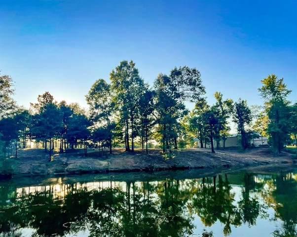 TBD Cr 2130, Pittsburg, TX 75686 (MLS #14636725) :: Robbins Real Estate Group