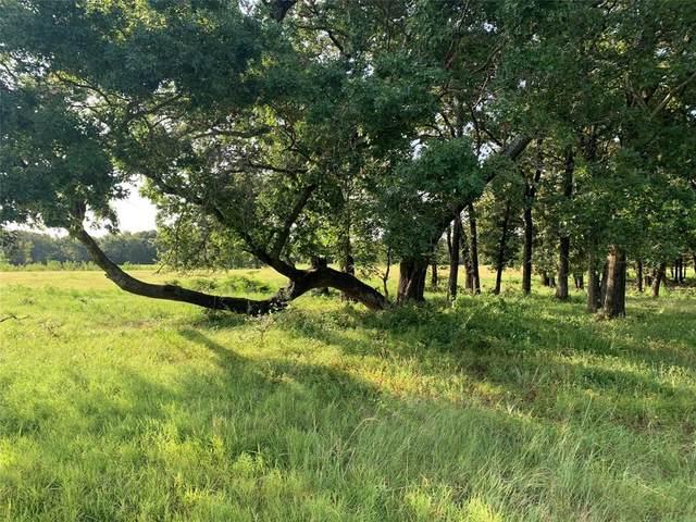 TBD Lot 5 Pop Noah Road, Collinsville, TX 76233 (MLS #14636770) :: The Mauelshagen Group