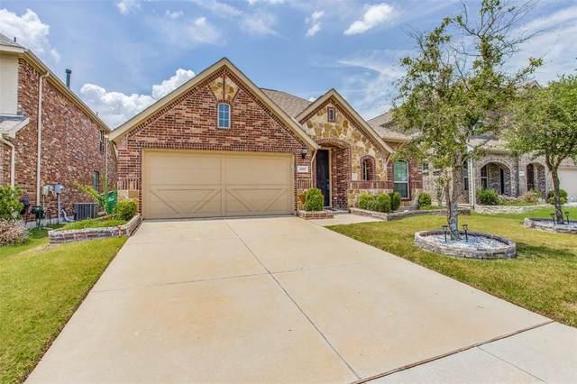 4017 Muscadine Drive, Mckinney, TX 75071 (MLS #14637046) :: EXIT Realty Elite