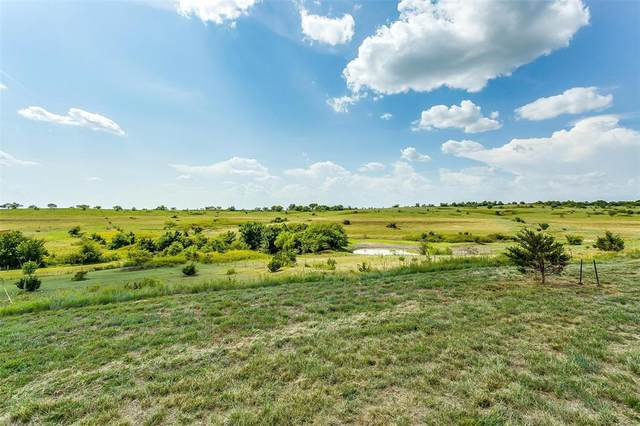 134 Upper Denton Court, Weatherford, TX 76085 (MLS #14637310) :: All Cities USA Realty