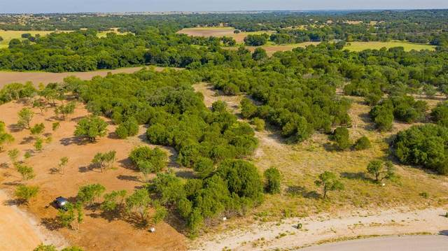 46 Timber View Ranch, Weatherford, TX 76087 (MLS #14637347) :: The Mitchell Group