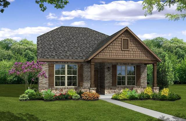 2036 Almassera Drive, Little Elm, TX 75068 (MLS #14637559) :: Real Estate By Design