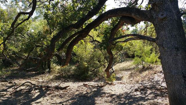 4132 El Rancho Court, Granbury, TX 76048 (MLS #14637635) :: All Cities USA Realty