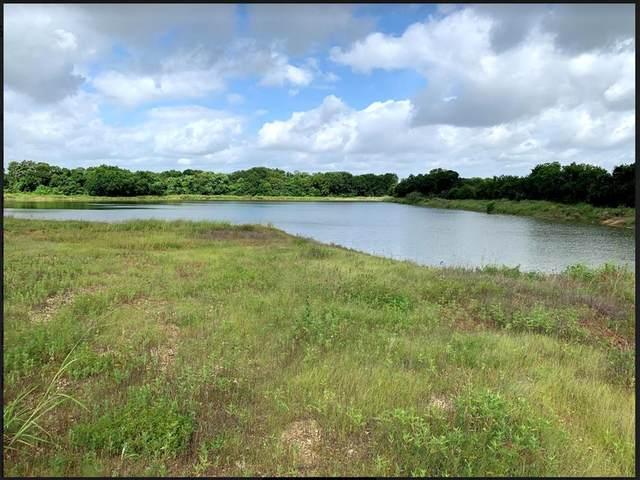 1233 County Road 801B, Cleburne, TX 76031 (MLS #14637869) :: Premier Properties Group of Keller Williams Realty