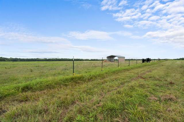 19778 County Road 656, Farmersville, TX 75442 (MLS #14639055) :: Real Estate By Design