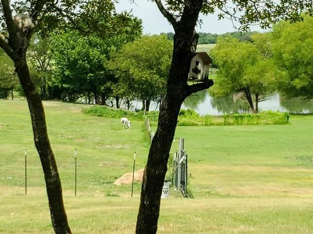 2291 Black Champ Road, Waxahachie, TX 75167 (MLS #14639082) :: All Cities USA Realty
