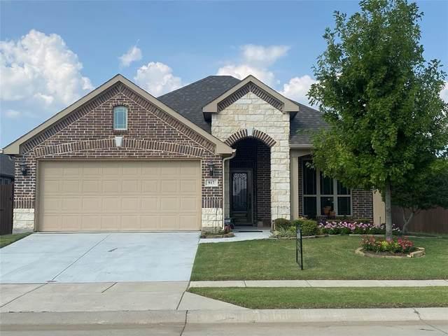 917 Ponderosa Drive, Aubrey, TX 76227 (MLS #14639270) :: The Daniel Team