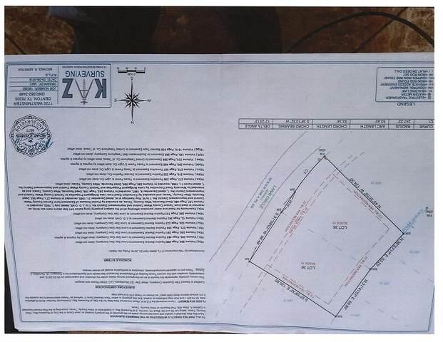 2 Lots Lanai Circle, Runaway Bay, TX 76426 (MLS #14640159) :: The Juli Black Team