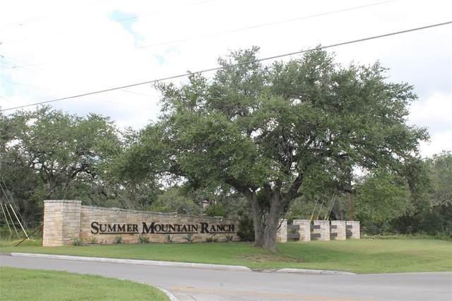 169 Ozark Drive, San Marcos, TX 78666 (MLS #14640918) :: Premier Properties Group of Keller Williams Realty