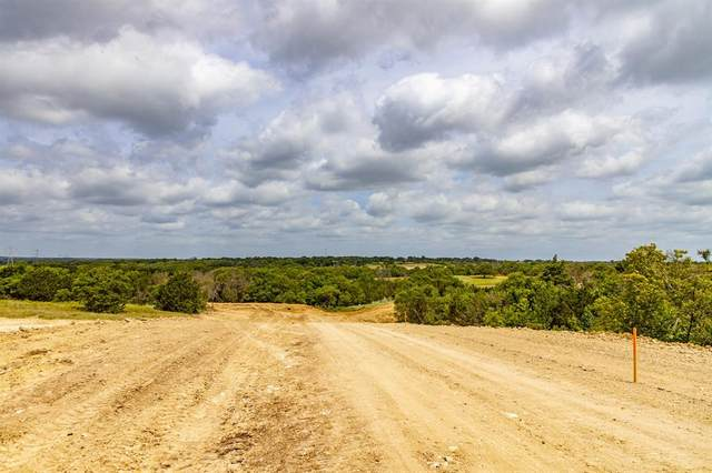 205 Latigo Way, Weatherford, TX 76088 (MLS #14641119) :: Russell Realty Group