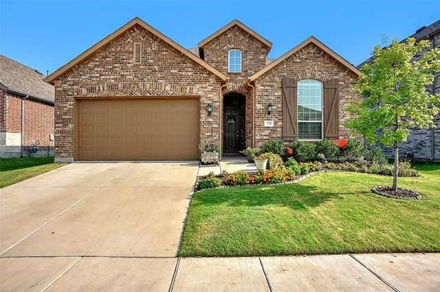 1126 Chatsworth Drive, Anna, TX 75409 (MLS #14641519) :: The Chad Smith Team