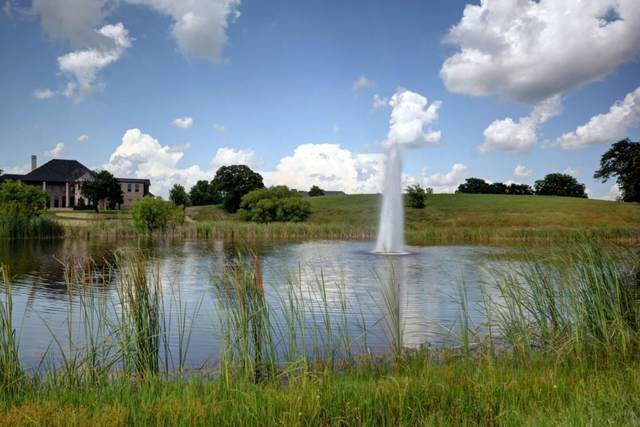 1900 Forest Hills Drive, Cross Roads, TX 76227 (MLS #14644810) :: Real Estate By Design