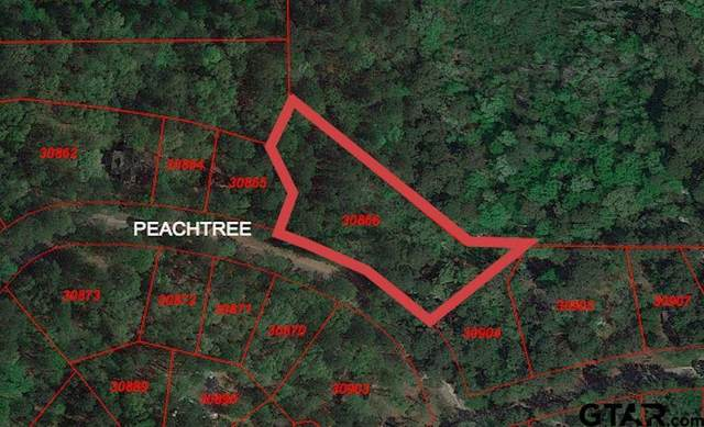284-286 Peachtree Lane, Holly Lake Ranch, TX 75765 (MLS #14645403) :: Real Estate By Design