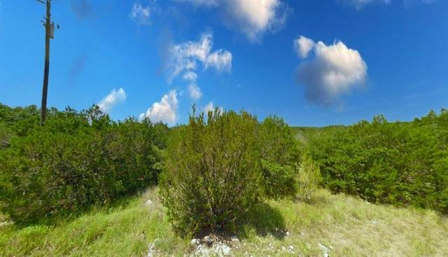 913 Thicket Trail, Granbury, TX 76048 (MLS #14646469) :: Robbins Real Estate Group