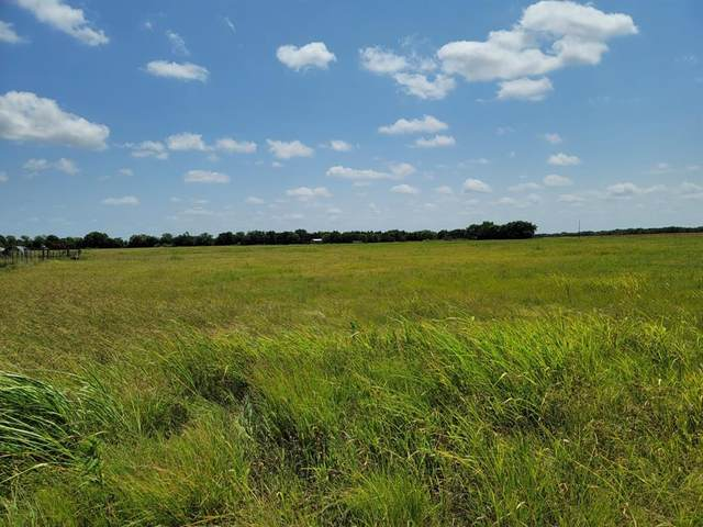 LOT 1 County Rd 1245, Savoy, TX 75479 (MLS #14646644) :: Real Estate By Design