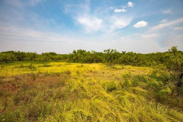 TBD Fm600, Haskell, TX 79521 (MLS #14647274) :: Real Estate By Design