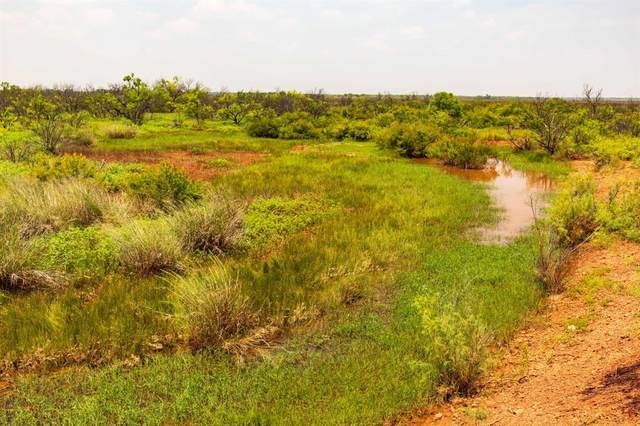 TBD Fm  600, Haskell, TX 79521 (MLS #14647368) :: Real Estate By Design