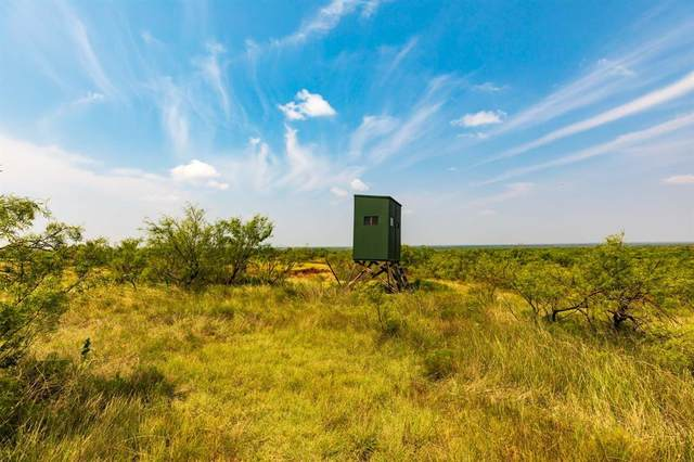 TBD Fm 600, Haskell, TX 79521 (MLS #14647429) :: Real Estate By Design